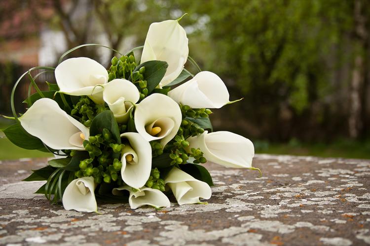 beautiful-wedding-clavels